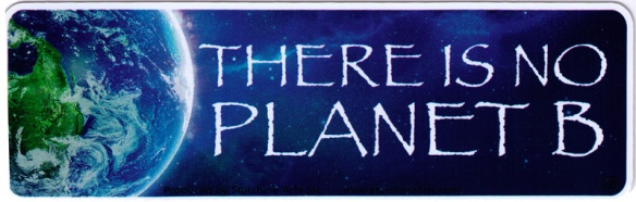 ks146-there-is-no-planet-b-small-bumper-sticker
